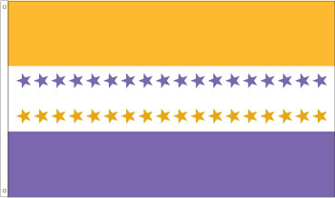 Suffragette Flag: 19th Amendment Victory Banner