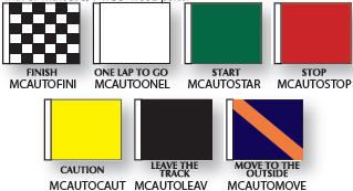 Official Auto Racing Flag Set